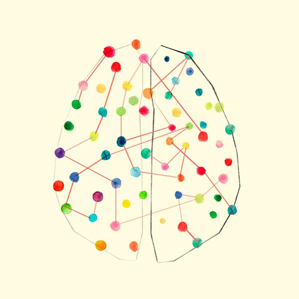 educación respetuosa neurociencia